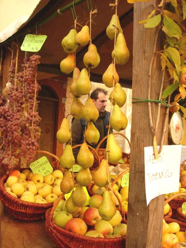 pere scipione mela limoncella uva appesa