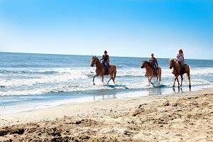 Villaggio Barricata spiaggia a cavallo b