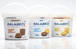 Galameo wall 2