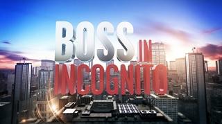 boss in incognito