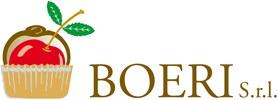 boeri logo