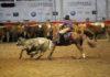 Fiera Cavalli Westernshow 6