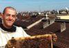 miele sul balcone