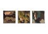 Cristina Volpi Mimetica-Organica trittico2016 corteccia su tessuto mimetico intelato 15x15 cm ogni elemento