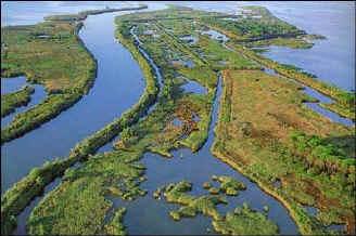 Delta fiume Po