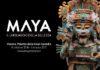 maya verona