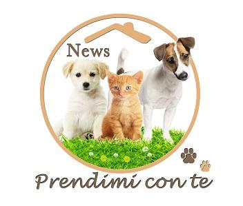 logo PRENDIMI CON TE r