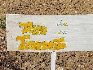 ARADEO KARADRA LA TERRA DEL TRAMONTO