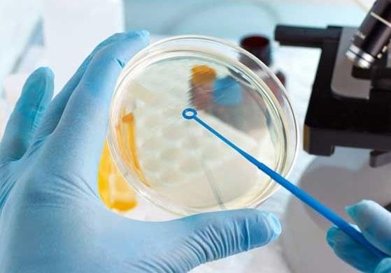 Microbiological Quality Control 2