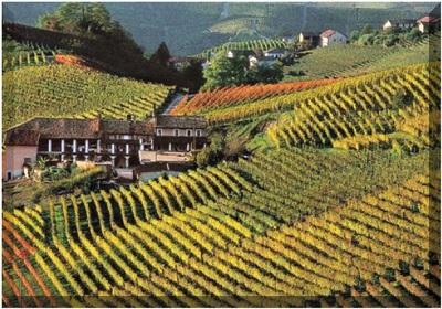turismo esperienziale Monferrato