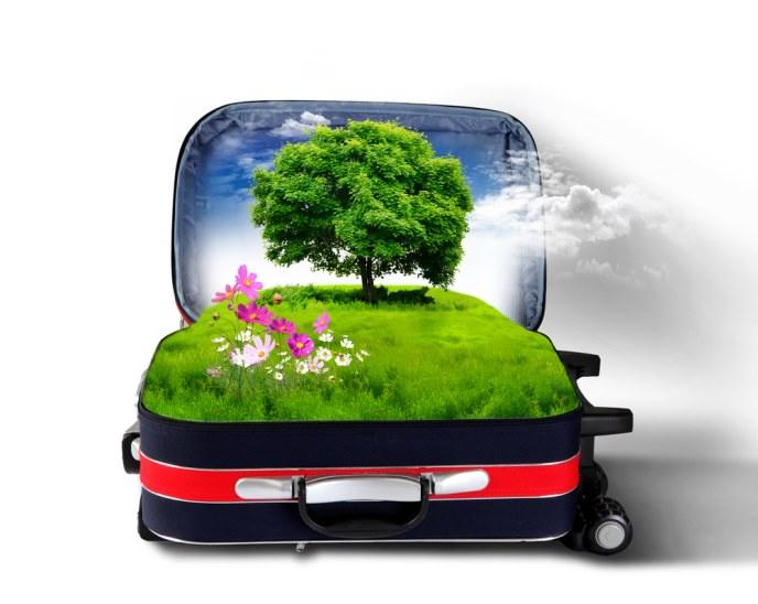 vacanze green holidays