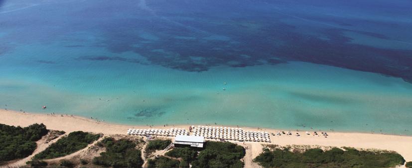 wcds-spiaggia