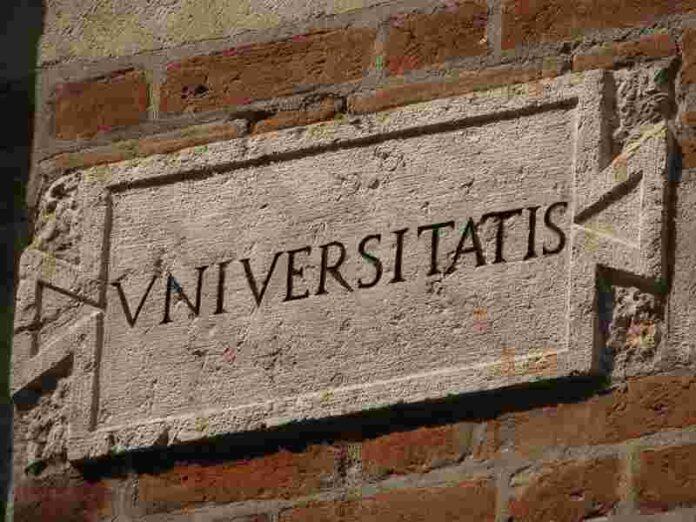 Universita Numero Chiuso Crollo Dei Laureati E Carenza Di Docenti