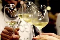 sorgentedelvinolive-bicchieri2 r