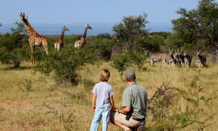 Vacanze in Sudafrica