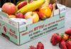 Bestack-Attivo-frutta