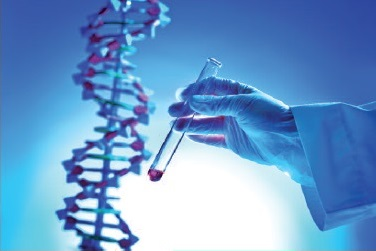Laboratorio ames - analisi del sangue r