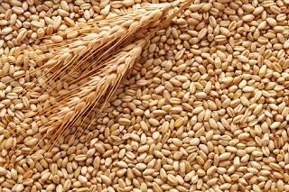 Prezzo del grano tenero in decisa crescita 2