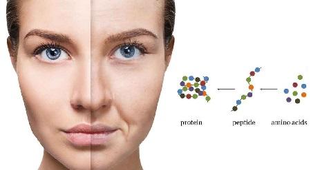 Peptidi biomimetici