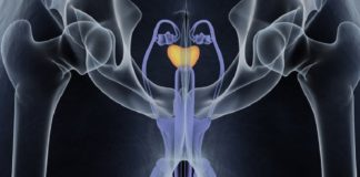 Prostate Urine Risk - nuovo test cancro alla prostata