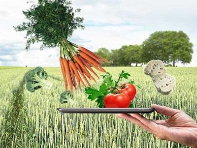 un estratto antibatterico per aumentare la vita degli alimenti