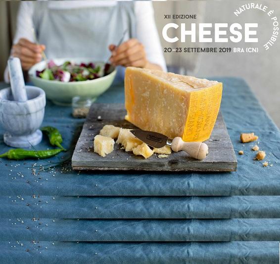 Cheese Parmigiano Reggiano