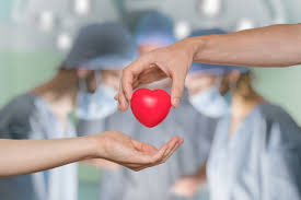 U.S. States Lead the World in Organ Donation