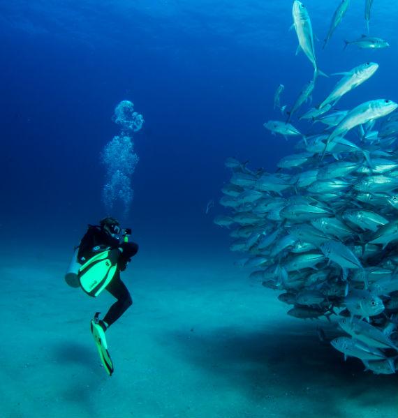 mute da sub nautica mare