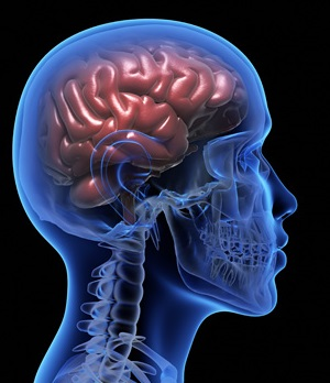 Prevenzione delle malattie cerebrovascolari