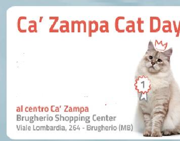 CAT DAY 2020