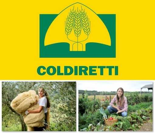 Coldiretti - Spesa sospesa del contadino a domicilio
