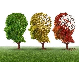 Deterioramento cognitivo disponibili le nuove raccomandazioni dellUspstf r