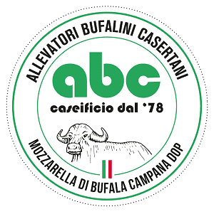 ABC CASEIFICO