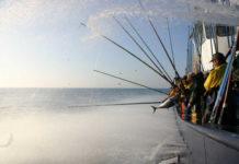 Pesca sostenibile -