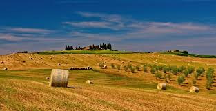 Piano Strategico Agroalimentare di Roma Capitale