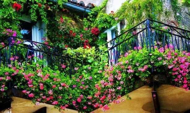 balconi in primavera