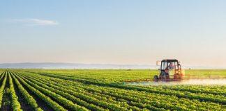 L'agricoltura italiana nel 2020