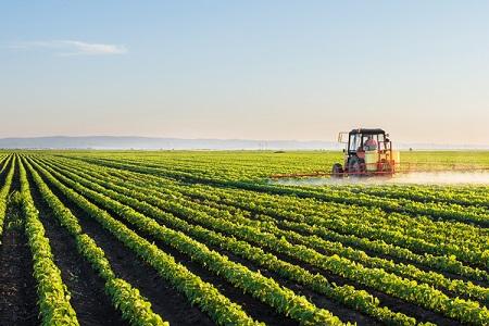 Lagricoltura italiana nel 2020