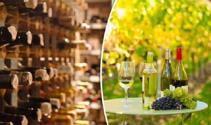 Wine-industry-British-wine-business-
