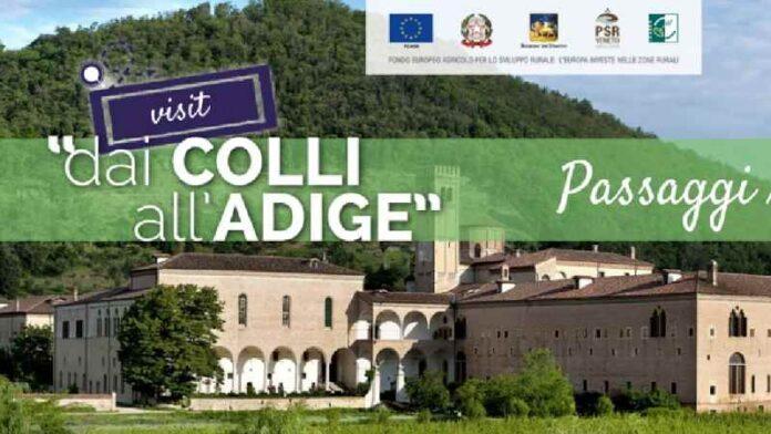 Ddaio Colli All'adige Paesaggi Rurali Padova