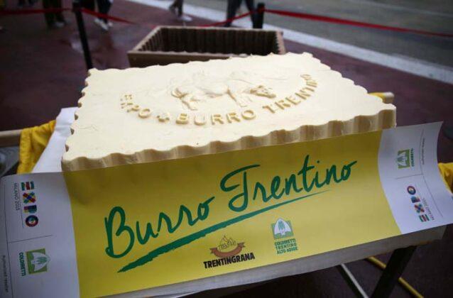 Expo Burro Big 2015 12