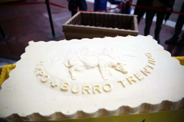 Expo Burro Big 2015 14