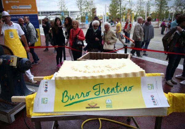 Expo Burro Big 2015 15