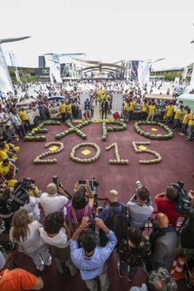 Expo Festa Del Gelato 5