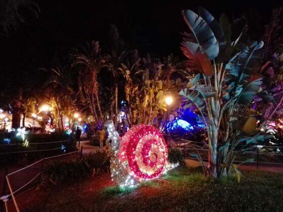 Salerno Luminarie 2016 21