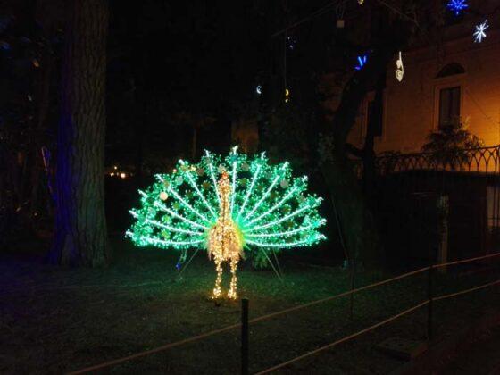 Salerno Luminarie 2016 25