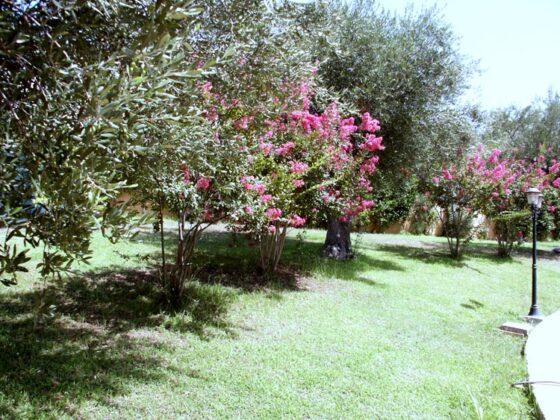 Giardino 3