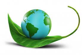 Agricoltura-green-ecosostenibile
