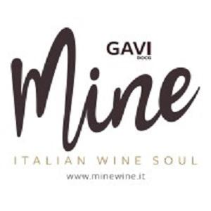 MINE-GAVI