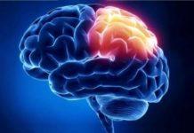 patologia cerebrale